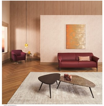 Living room setting with Hakwood Dawn flooring