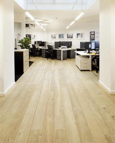 Hakwood Muse flooring in the office